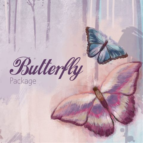 Butterfly Clipart package