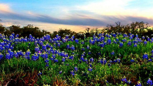 travel to Texas photo tour