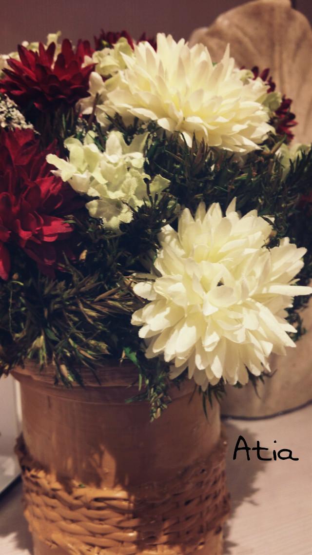flowers ^_^  :)