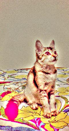 pets & animals vintage fatal photography popart