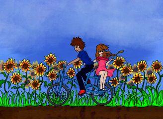 dcsunflowers