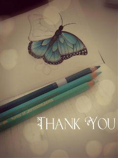 gdthankyoucard pencilart bokeh butterfly drawingbutterflies